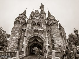 Cinderella Castle in Walt Disney World in Black and White