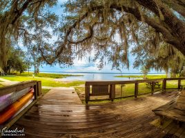 Lake Louisa State Park in Florida