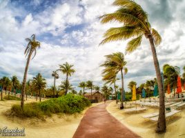 Wind on Castaway Cay